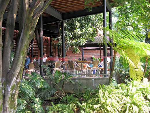 Medellín's Laureles neighborhood is a green, elegant option for your overseas home