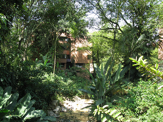 City planners and developers in El Poblado have done a great job preserving the lush surroundings.