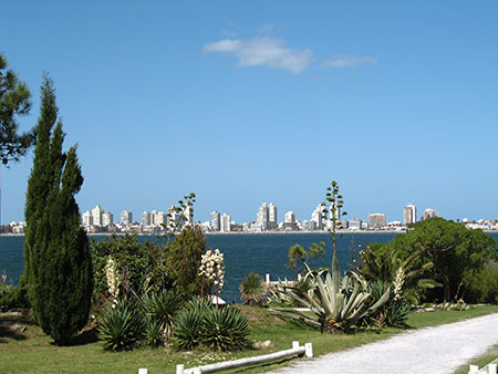Punta del Este as seen from Isla Gorriti, just offshore