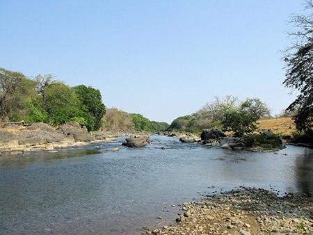 One of several backup water supplies at the Simply Natural Plantation
