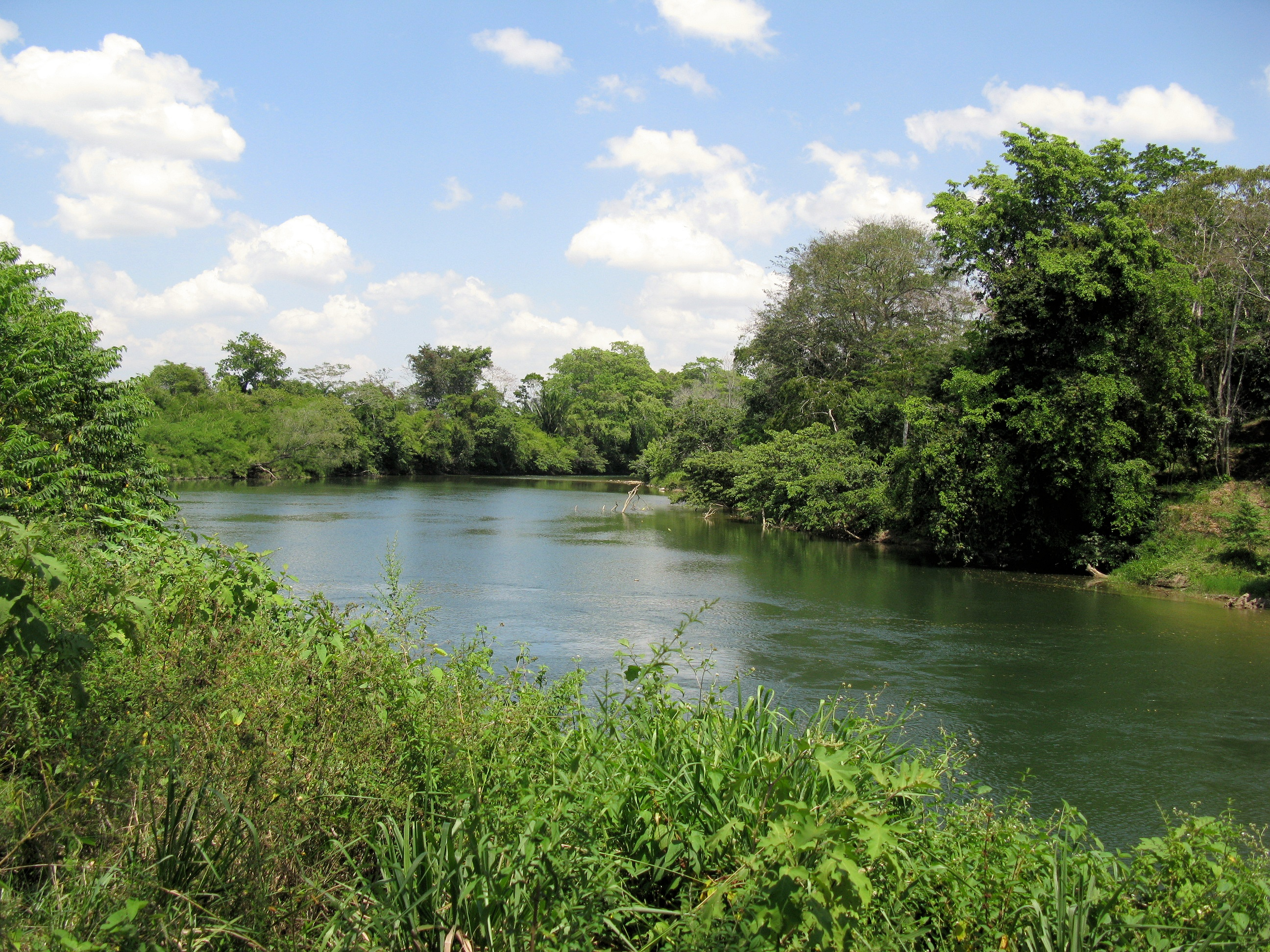 Belize River as it passes the Carmelita Gardens  project on its way to Belize City