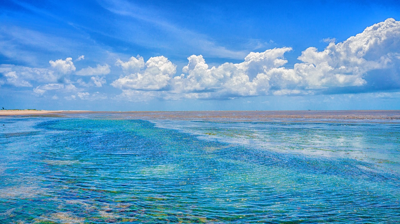 discover beachfront brazil