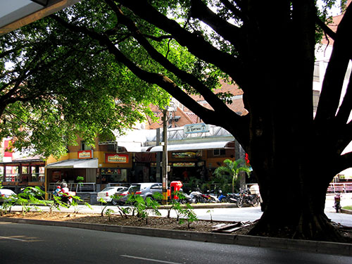 Shady Laureles is Medellín's second most-affluent sector