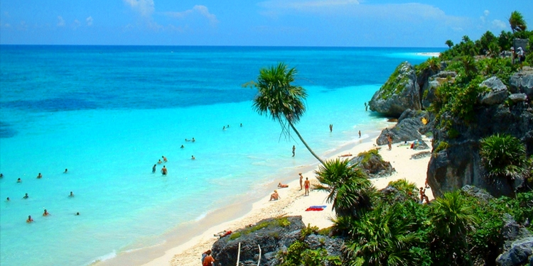mexico riviera maya beach with palm trees and clear blue waters