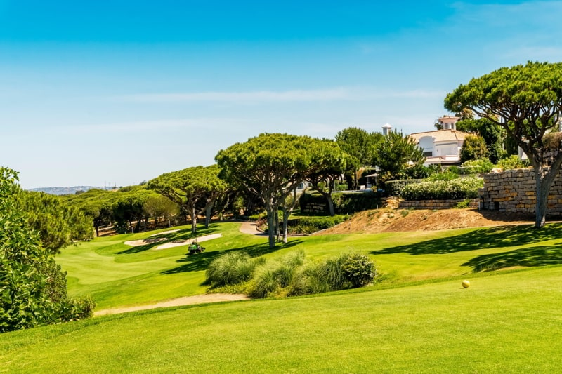 Beautiful golf course among pine trees in Algarve, south Portugal.