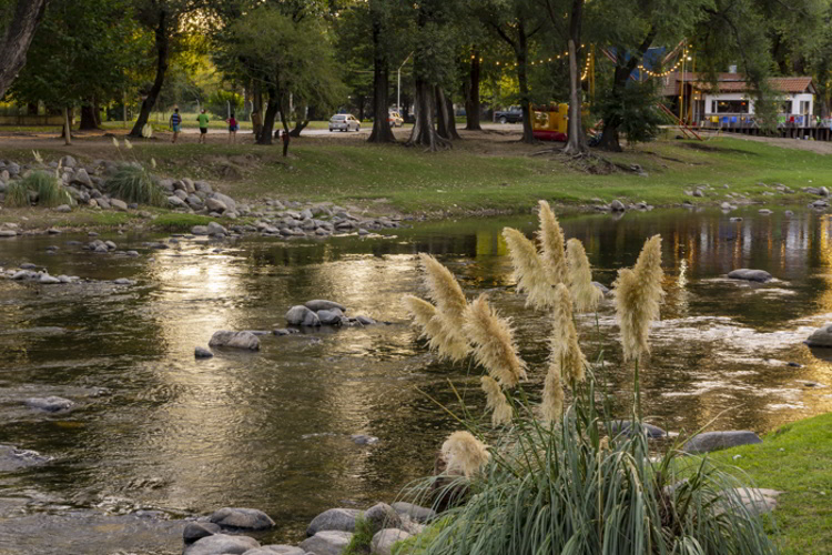 Grass against flowing river during summer season in Cordoba, Argentina