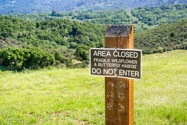 Area closed Fragile Wildflower & Butterfly Habitat sign